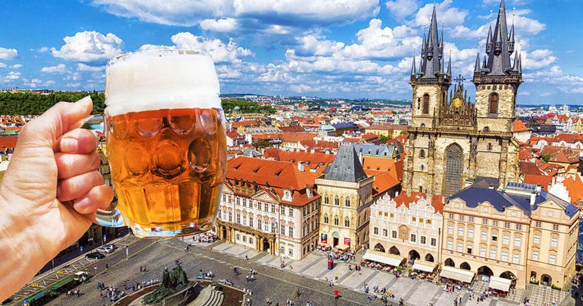 пиво чехии кружка