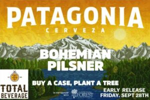 patagonia beer